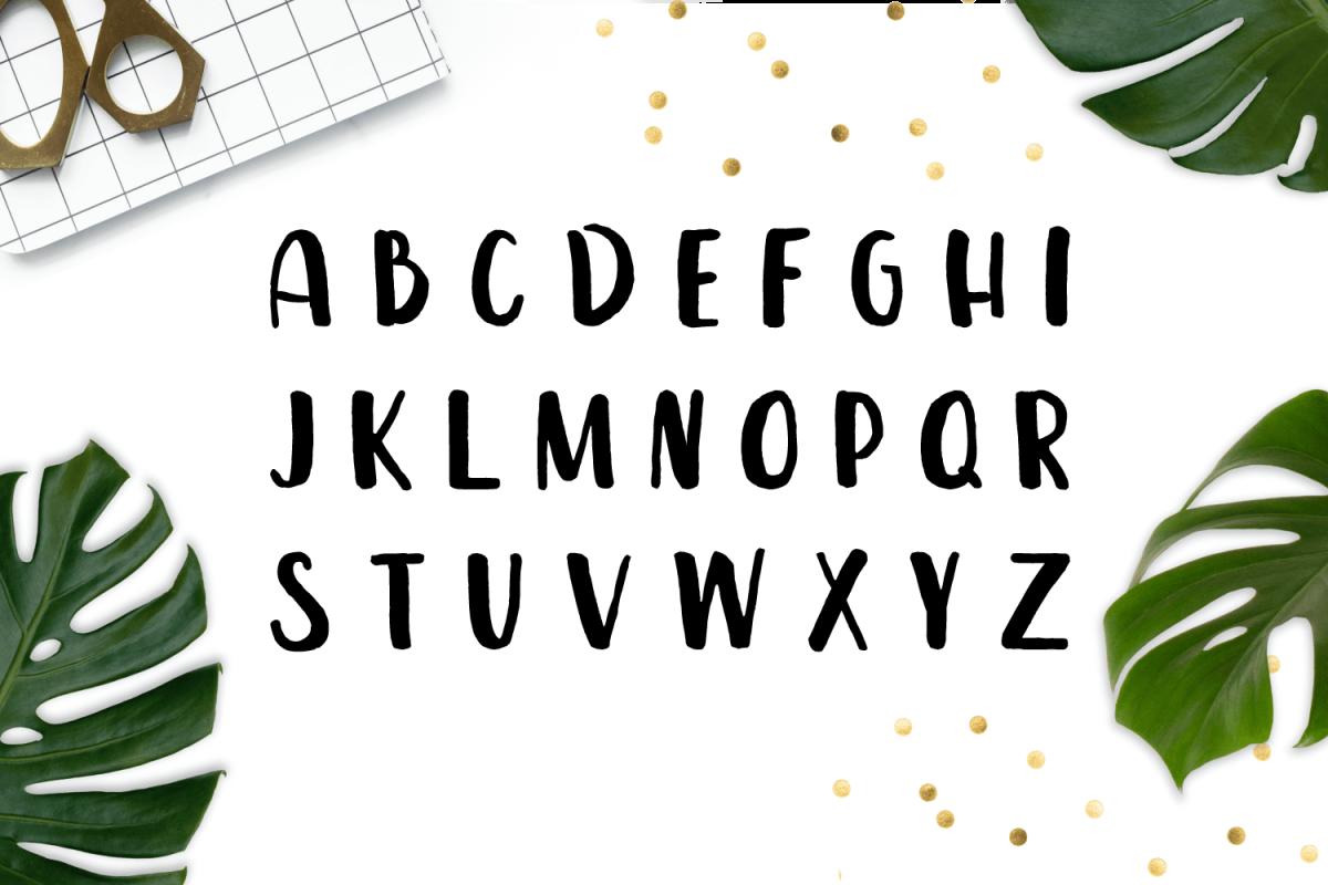 Leira – Extended Brush Font